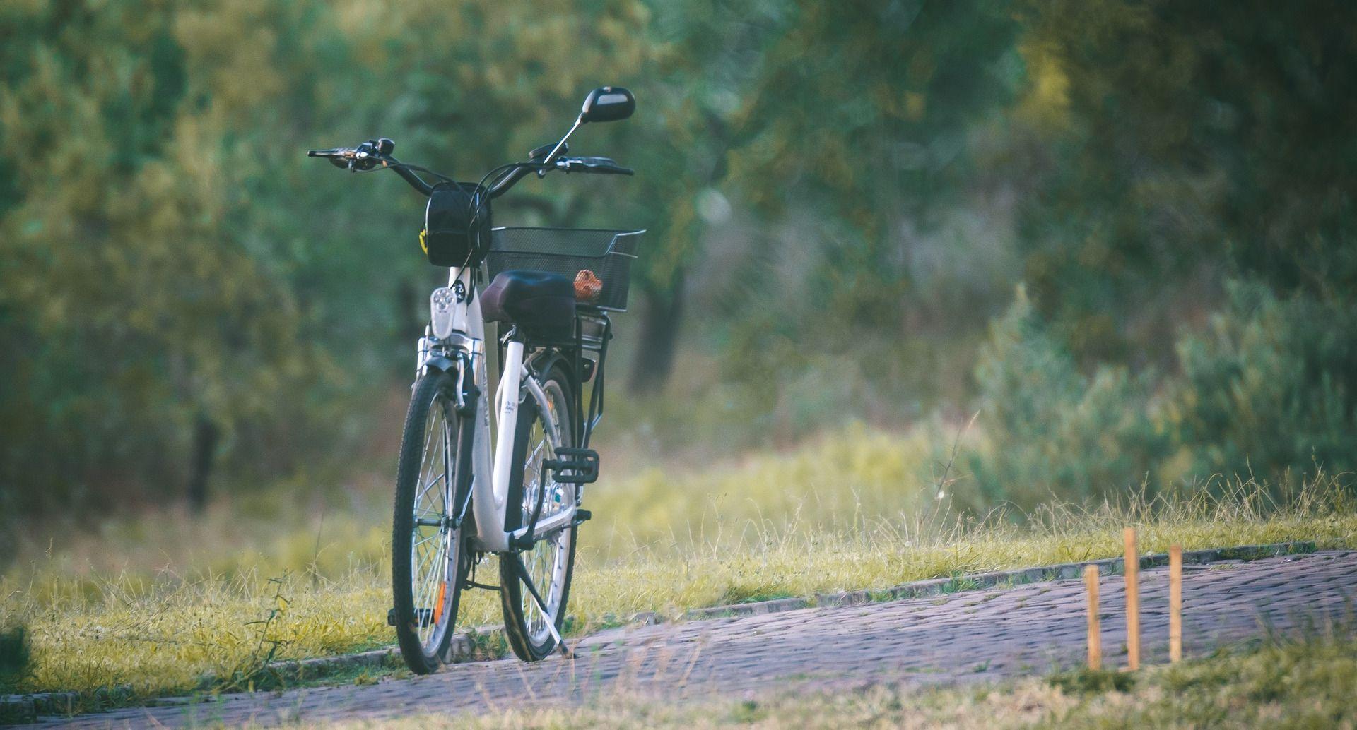 Električno treking kolo nam pomaga, da na izletu lahko uživa cela družina