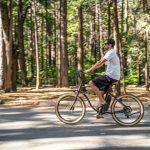 teža električnega kolesa